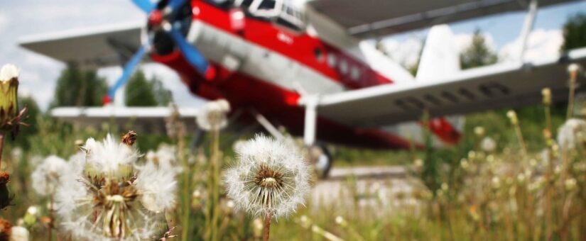 С международным днем гражданской авиации!